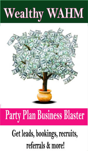 party-plan-business-blaster.jpg